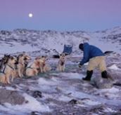 Human Planet: Arctic