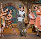 Cbeebies Elves and The Shoemaker