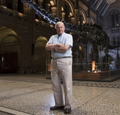 David Attenborough's Natural History Museum Alive 3D