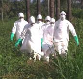 Sky News Live At Five: Ebola